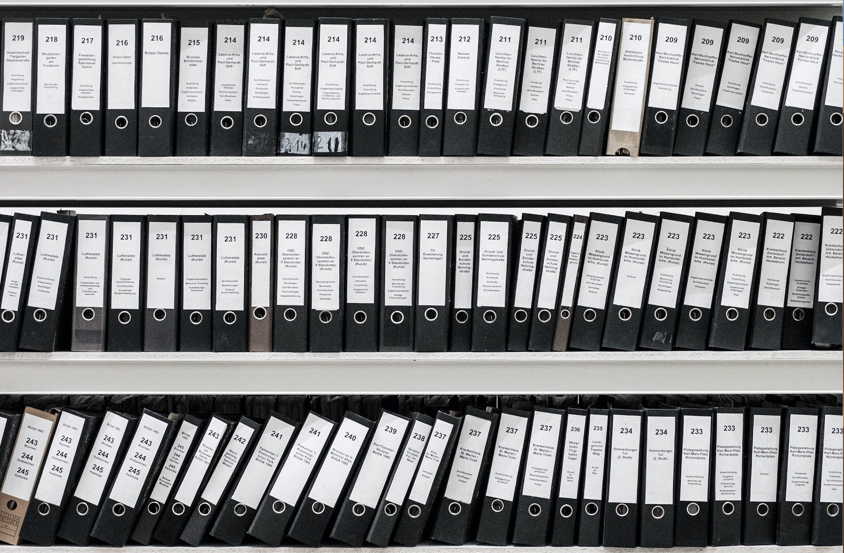 Rows of patient records